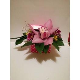 Кутия с орхидея