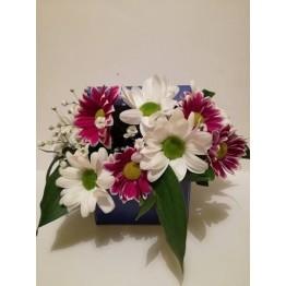 Кутия с хризантема